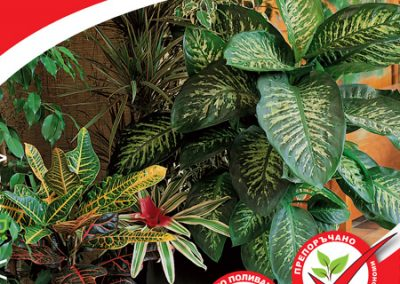 Peat substrate for indoor and room plants with coconut fibers
