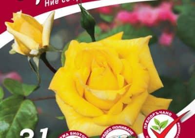 Смес за засаждане на рози